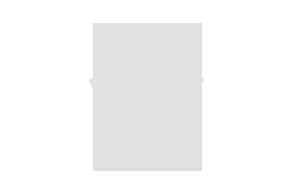 RFX Inc. Logo